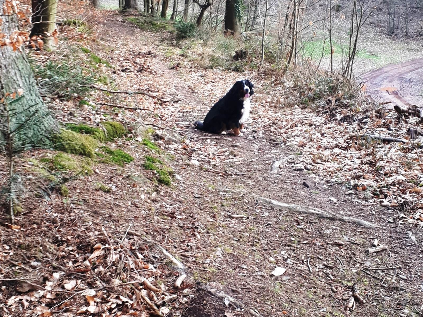 Une randonnée en février