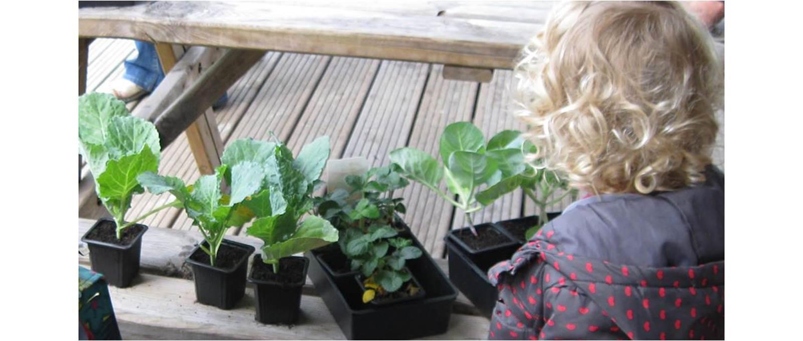 Faites découvrir l'environnement et l'écologie aux enfants