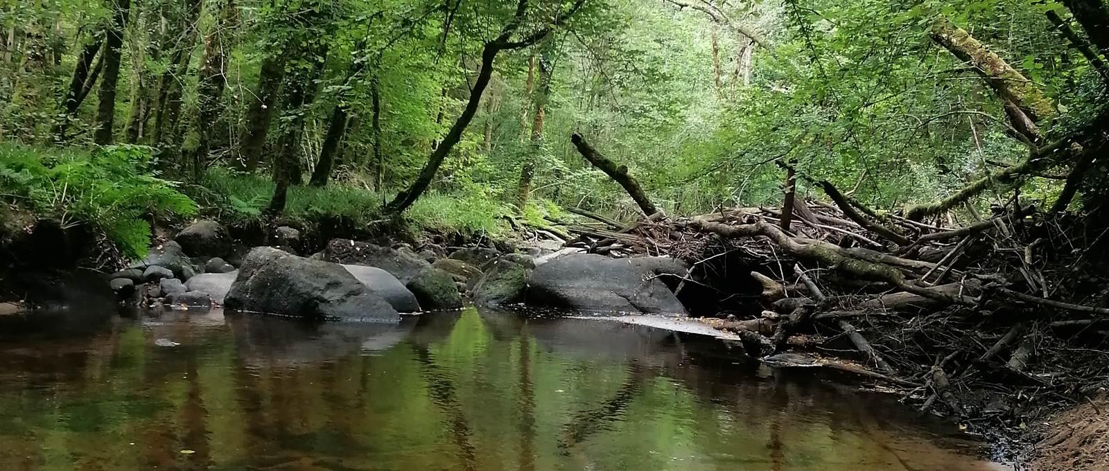 La rivière LE SULLY Périgord
