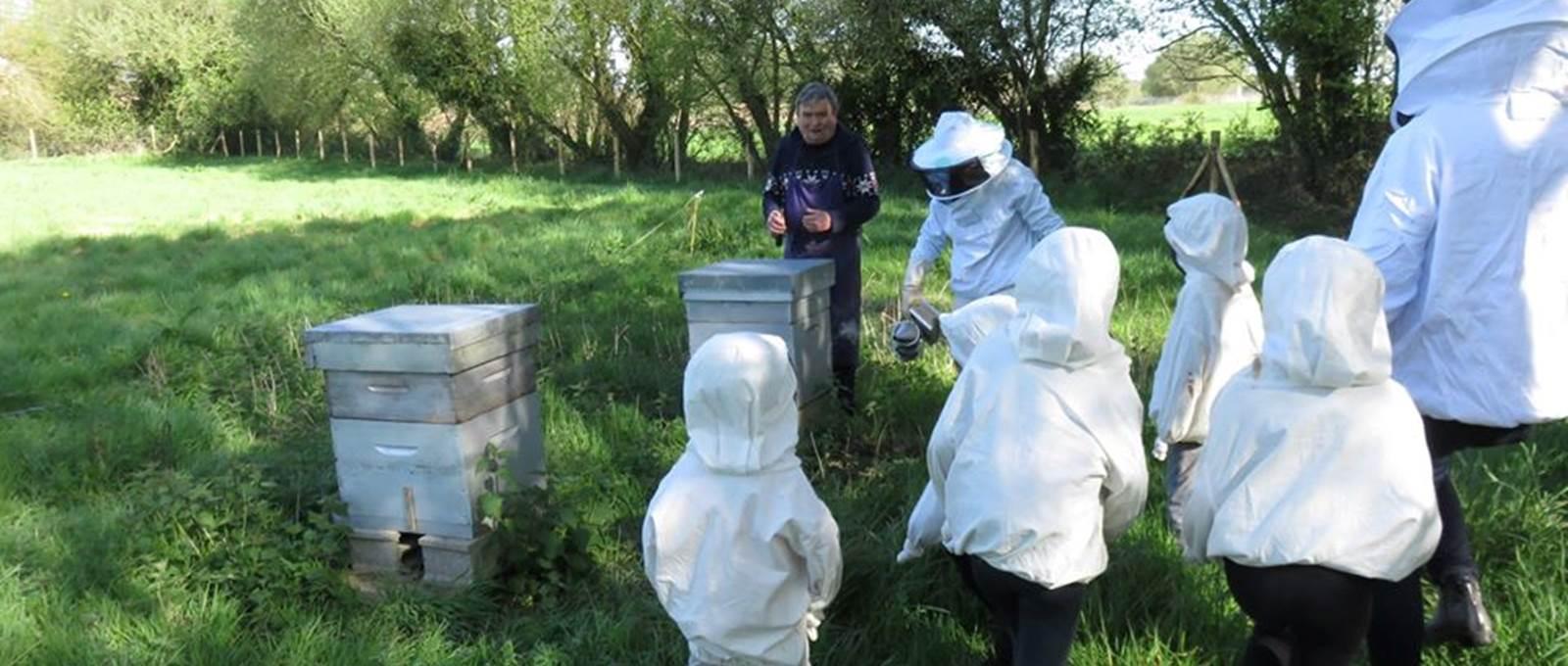 Les enfants découvrent l'apiculture chez notre mascotte préférée