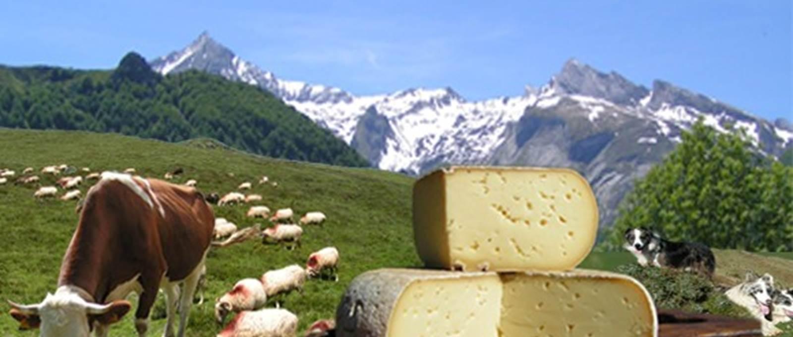 ferme de Pépé Marcel (Catherine MONTAUBAN )