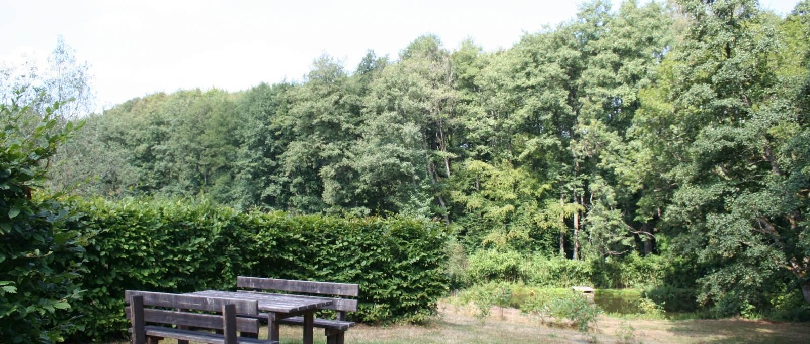 Un pique nique au bord de l'étang « La Landre », si vous le désirez, nous mettons un barbecue à votre disposition.  Chambres et table d'Hôtes « La Landre » la Vôge les Bains, Bains les Bains, Le Clerjus.