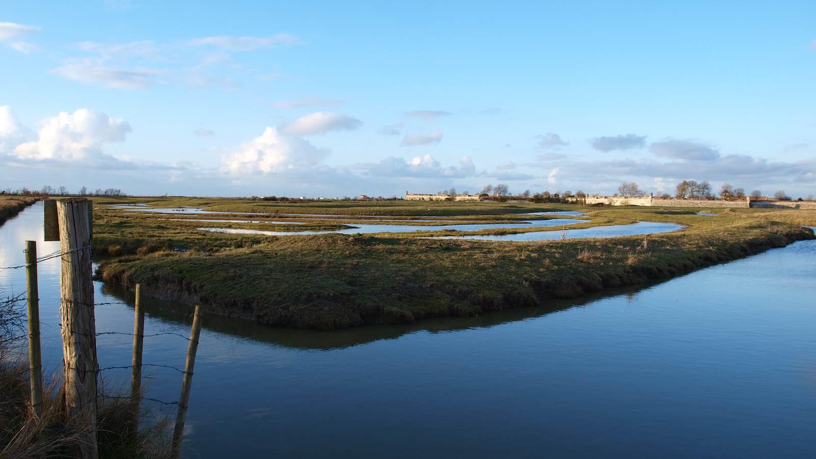 Le bassin de Marennes, les marais et la place forte de Brouage