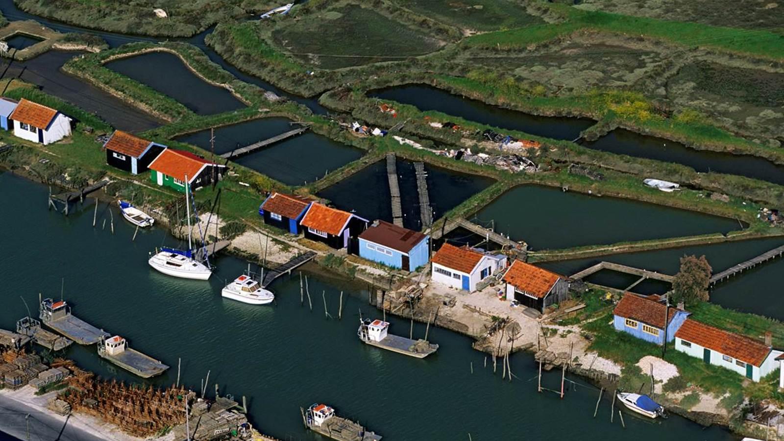 Le bassin de Marennes-Oléron, les marais, la place forte de Brouage...