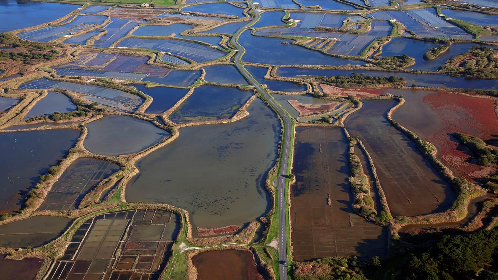 La presqu'île de Guérande et les marais salants