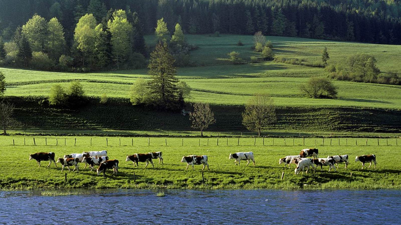 Les plateaux du Haut-Doubs