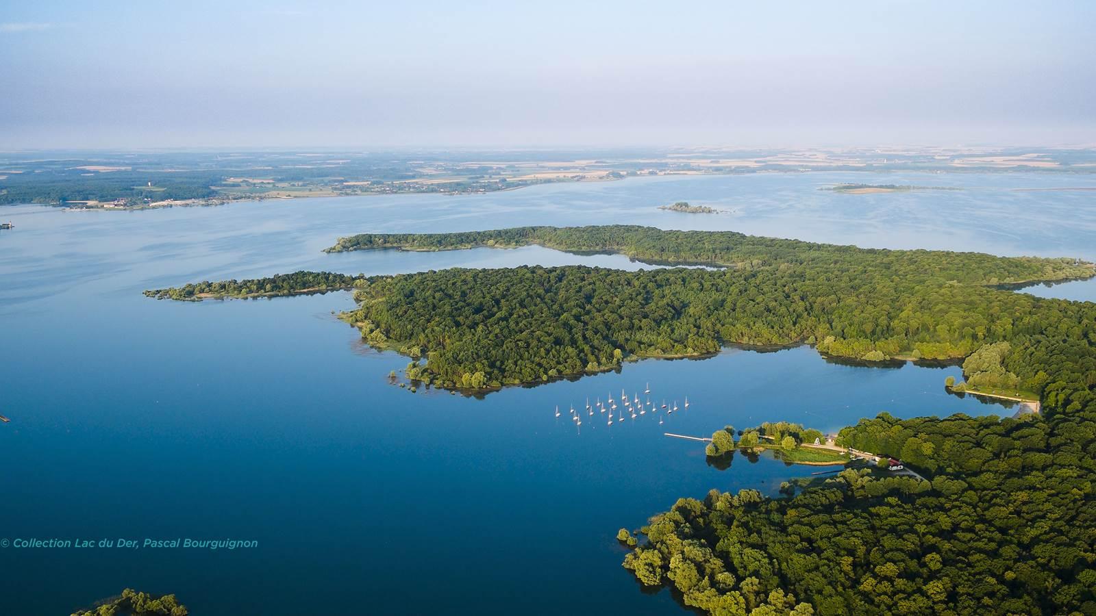 Le lac du Der-Chantecoq