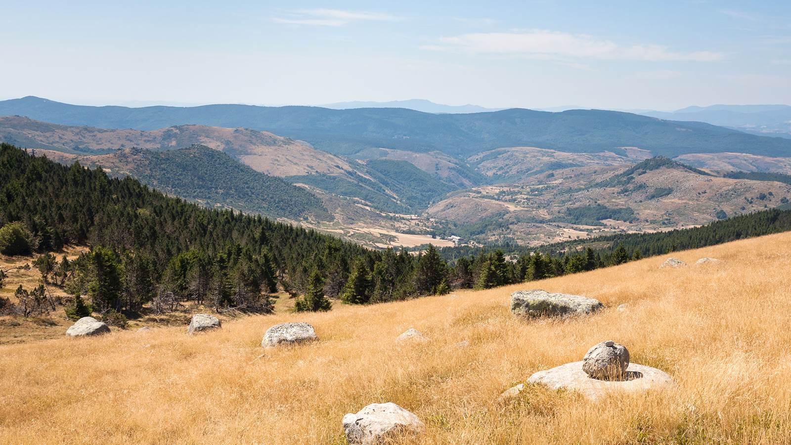 Le mont Lozère, point culminant des Cévennes