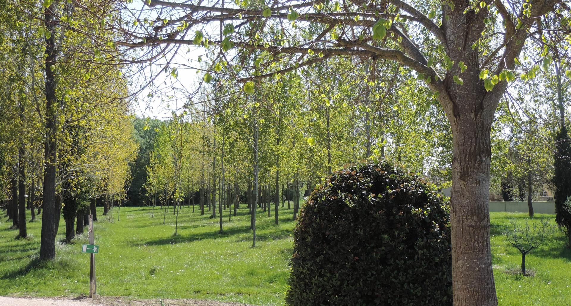 Parc hotel residence les peupliers loriol du comtat provence