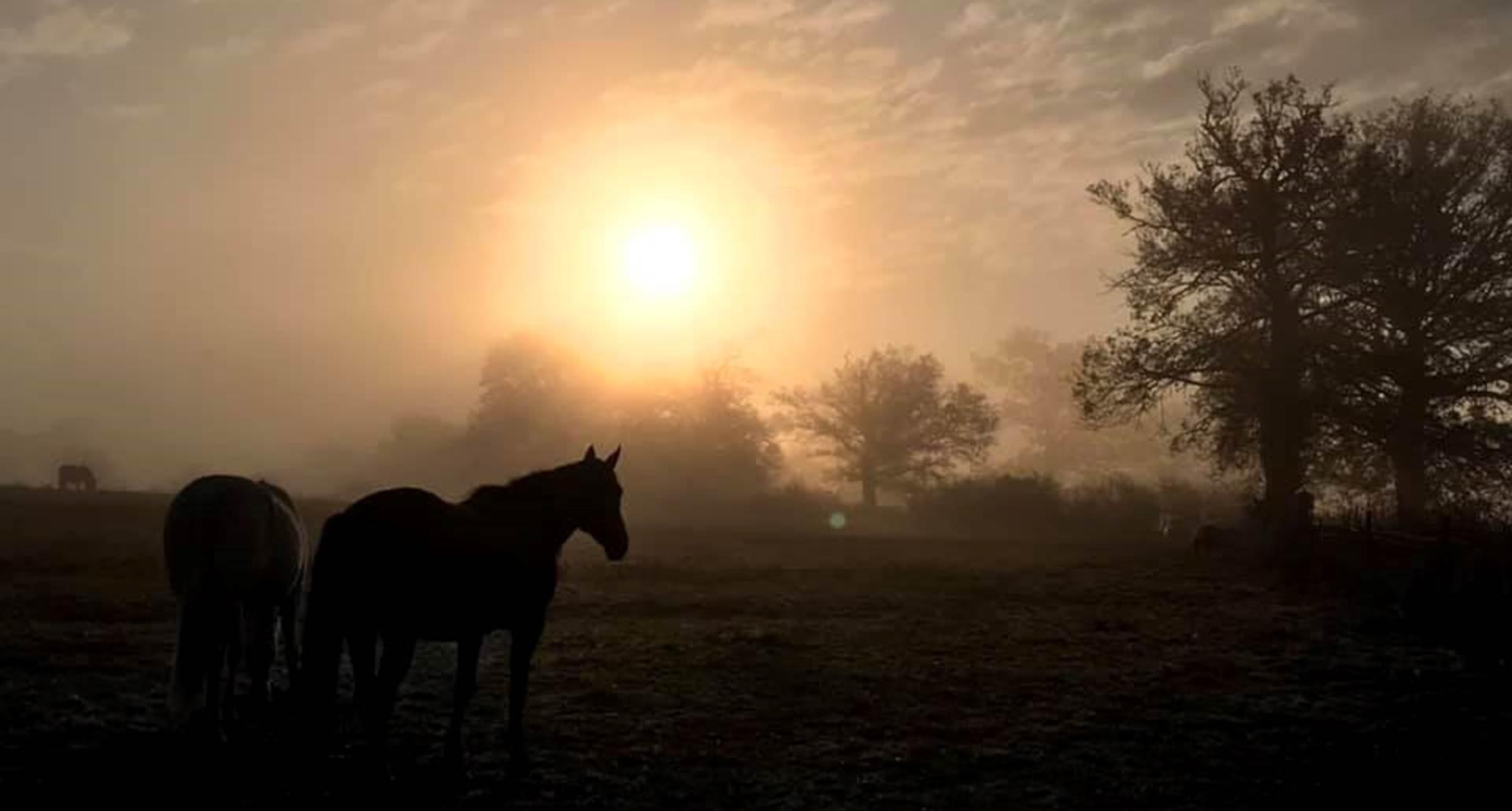 Lever de soleil sur Sermana