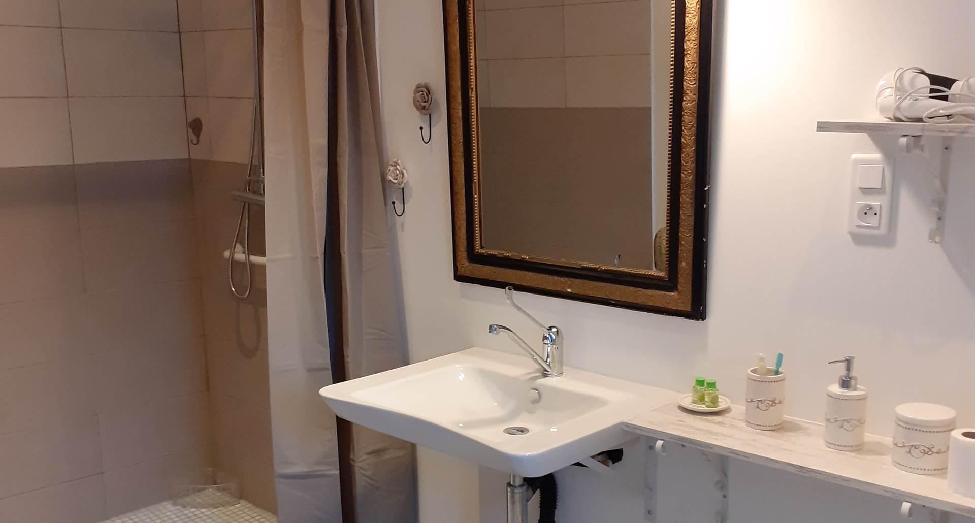Duplex La Grange, rdc, salle de bainet wc.