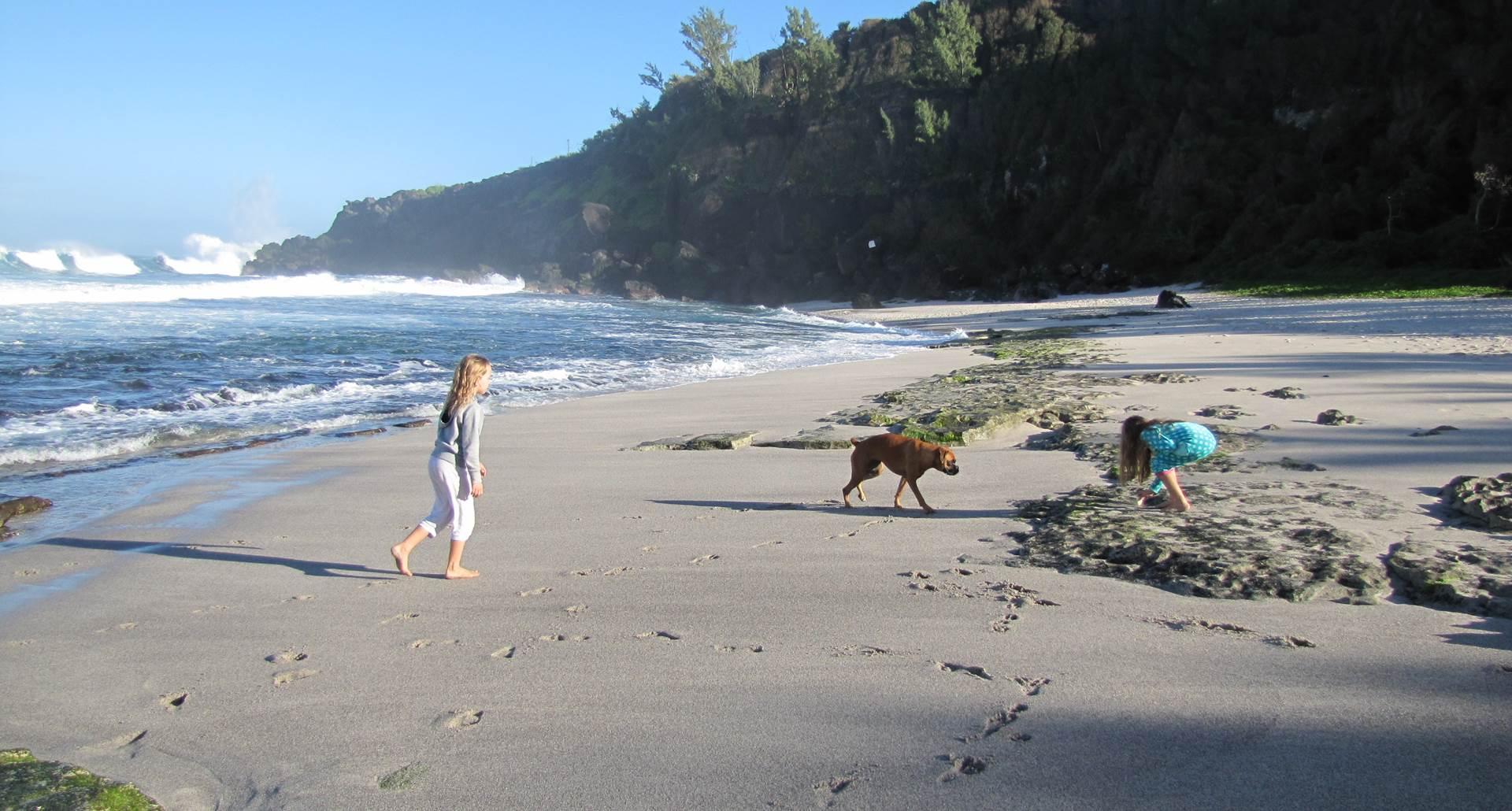 plage de l'océan indien