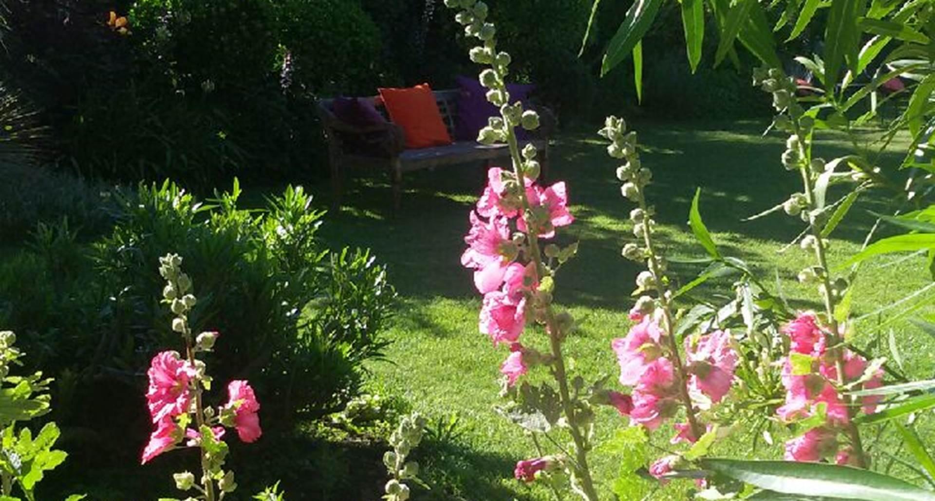 Douceur de juin  au jardin