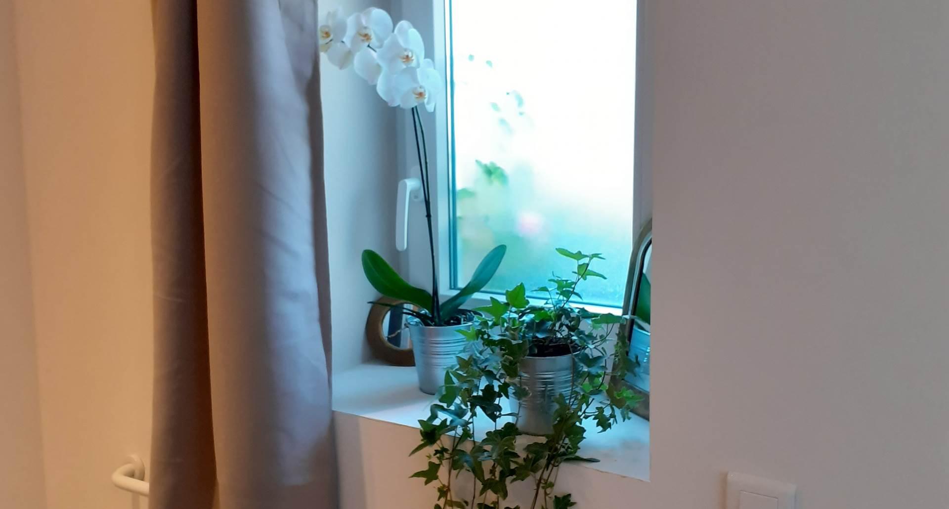 Duplex La Grange, rdc, salle de bain avec wc.