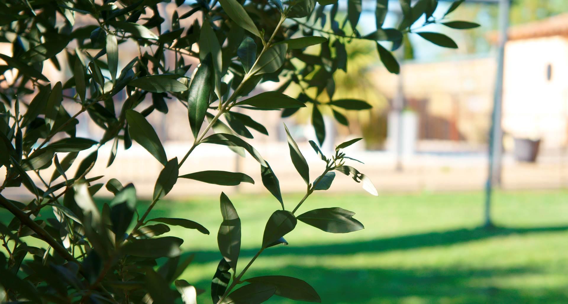 jardin residence les peupliers