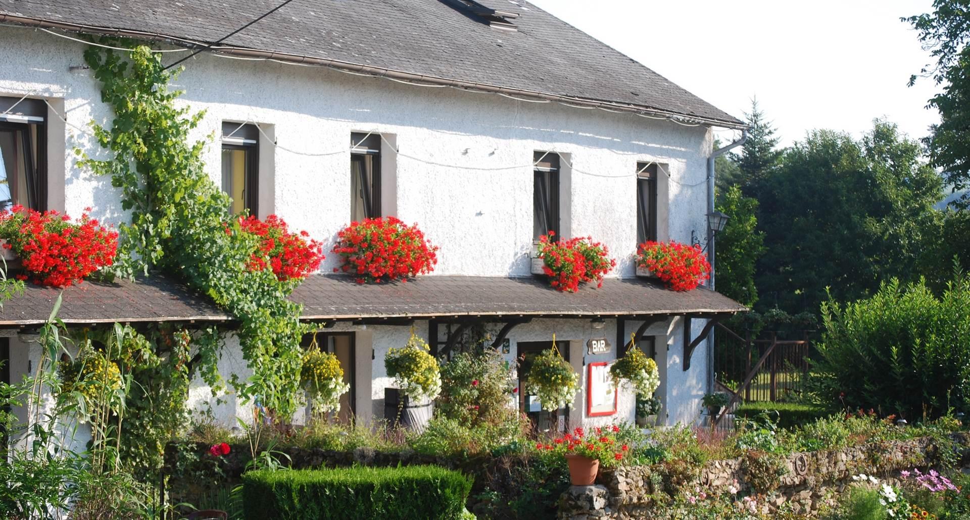 Les fleurs au Ranch des Lacs Auberge au coeur du Limousin 87120