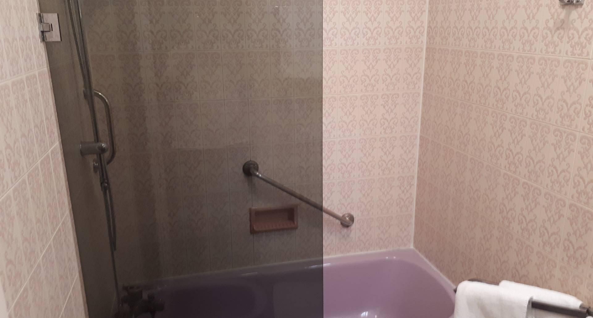 la baignoire-douche