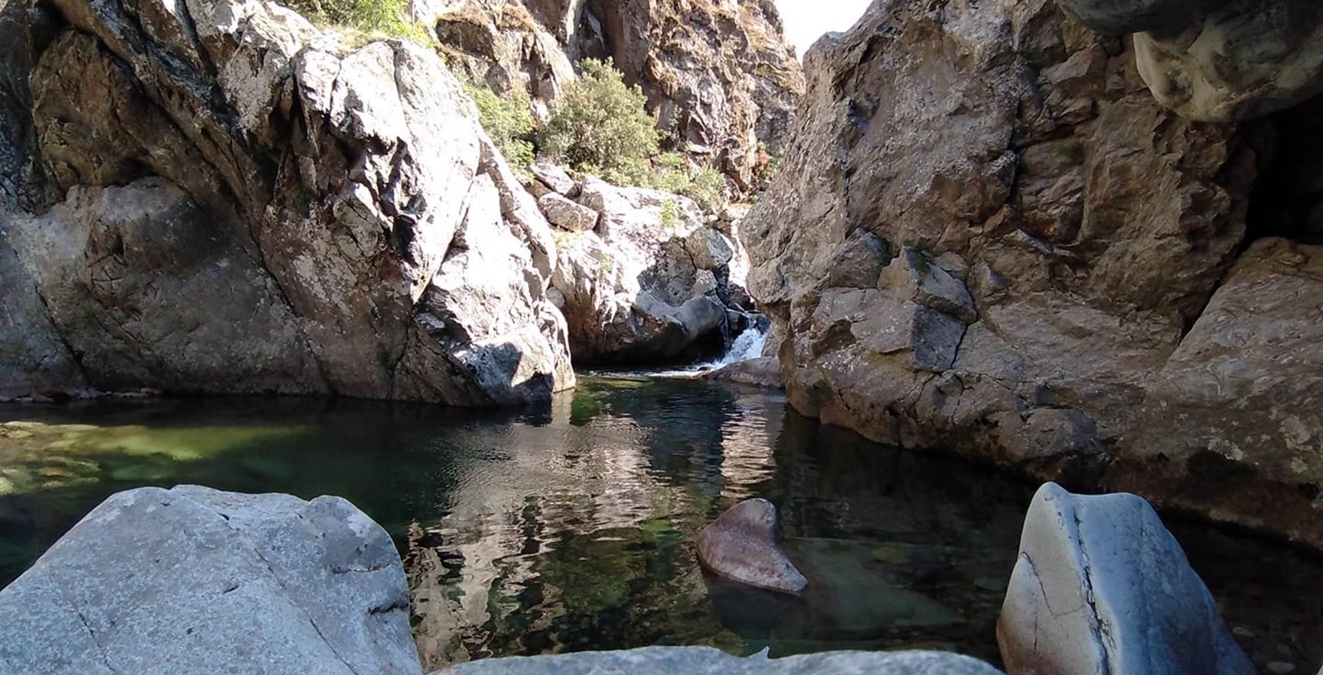 riviere asco