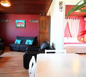 Hévéa vue d'ensemble - Oasis de Terre Rouge - Saint-Pierre Réunion 974