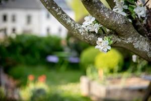 A-Quiet-Place-Prendre-le-temps-au-jardin