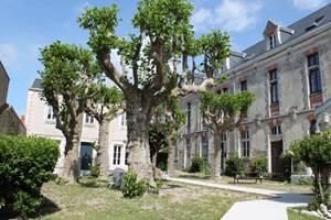Aube Cour