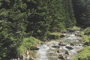 Gave d'Azun au dessus du Lac du Tech Val d'Azun Pyrénées