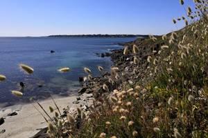 Les plages de Kerfany et Trenez au bord du GR34 à quelques minutes de notre hébergement.