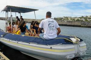 cocoboat port de saint gilles les bains 974 réunion