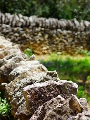 Entre champs et garrigue - A la découverte des sentiers d'Alès Agglomération
