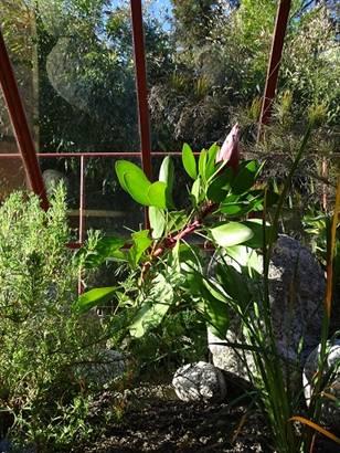 Expositions Les Plantes Méditerrannéennes à la Bambouseraie