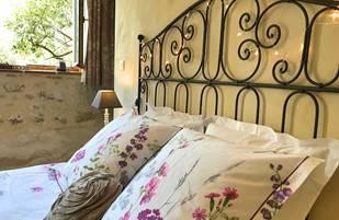 Chambre de charme Fleur de Vigne, grand lit