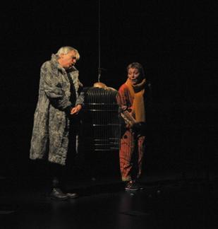 Théâtre : Le journal d'un chat assassin