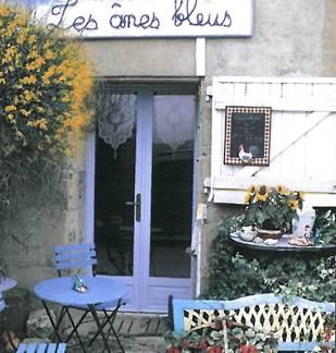 Association Les Anes Bleus