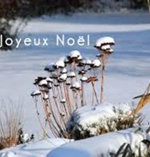 Atelier : Noël Nature