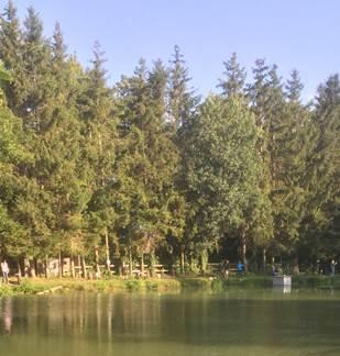 Pêche en étang - La Truite au Bleu