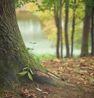 Fête de la nature et Portes Ouvertes