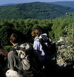 Randonnée : la balade de Meillier-Fontaine