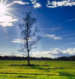 Fête du conte  dans la Réserve Naturelle de la Pointe de Givet