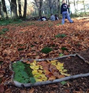 Découverte de la Forêt / Land'Art d'Automne