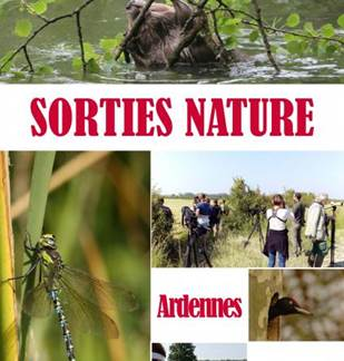 Sortie nature: découverte des prairies de la vallée de l'Aisne