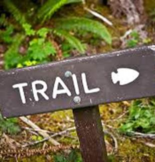 1er Trail du Plateau