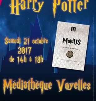 Jeux de rôle Harry Potter