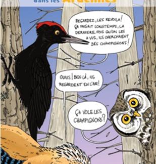 Sortie Nature Saurez-vous reconnaître les différents ululements des espèces du site Natura 2000 ?