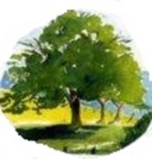 Conférence Nature et Avenir