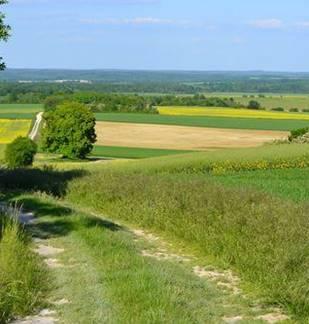 Découverte des prairies de la vallée de l'Aisne