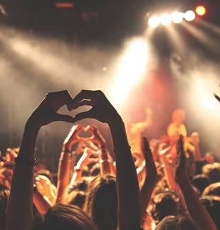 Concert : Boogie Night