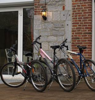 Mountain bike rental (Hotel