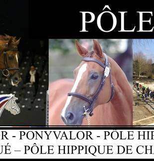 Pôle Hippique de Charleville-Mézières