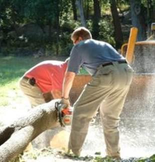 Atelier forêt (affouage et sécurité)