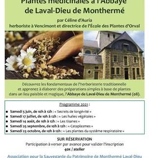 Plantes médicinales à l'Abbaye de Laval Dieu